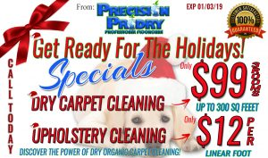 Clermont Fl Dry Carpet Cleaning